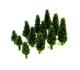 (A-104G) Dark Green Poplar Trees